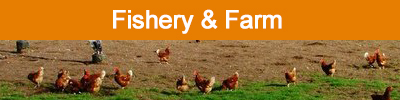 fishrey & farm - ASL Group