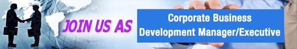 corporate business development managerexecutive