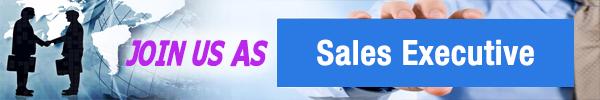 sales executive - ASL Group